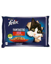 FELIX Fantastic So gut wie es aussieht mit Kaninchen & mit Lamm in Gelee 24x85g