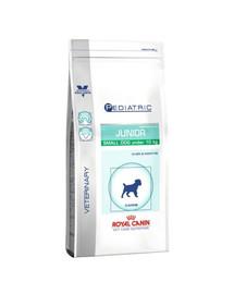 ROYAL CANIN PEDIATRIC JUNIOR SMALL DOG 2 kg