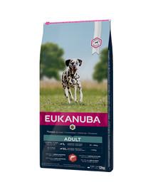 EUKANUBA Adult Salmon & Rice All Breeds 12 kg