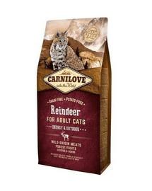 CARNILOVE Cat Energy & Outdoor 2 kg