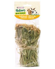 VERSELE-LAGA Snack Hay Bale Dandelion 70 g