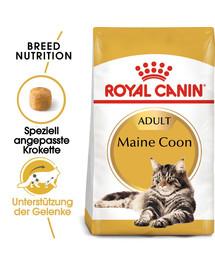 ROYAL CANIN Maine Coon Adult Katzenfutter trocken 10 kg