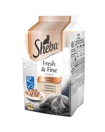 SHEBA Portionsbeutel Multipack Feine Vielfalt MSC 12 x 6x50g
