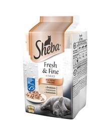 SHEBA 6er-Multipack Fresh&Fine Feine Vielfalt