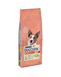 PURINA Dog Chow active chicken 14 kg Huhn