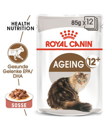 ROYAL CANIN AGEING 12+ in Soße Nassfutter für ältere Katzen 12 x 85 g
