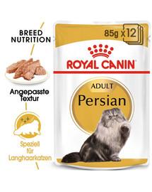 ROYAL CANIN Persian Adult Katzenfutter nass für Perser-Katzen 12 x 85g