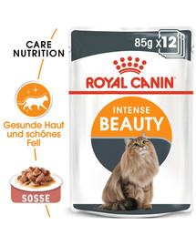 ROYAL CANIN Intense Beauty Katzenfutter nass in Soße für schönes Fell 12x85 g
