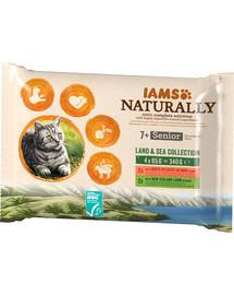 IAMS Naturally ältere Katzen 4 x 85 g