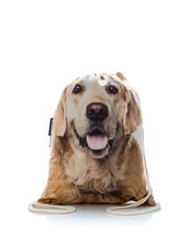 FERA Sportbeutel mit dem Bildaufdruck des Hund Golden Retriever