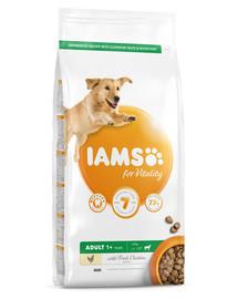 IAMS for Vitality für ausgewachsene Hunde großer Rassen mit frischem Huhn 5 kg