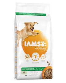 IAMS for Vitality für ausgewachsene Hunde großer Rassen mit Lamm 3 kg